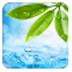 輕輕一點云播神器(里番神器) V17.11.27 綠色版