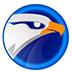 EagleGet(猎鹰) V2.1.6.20 绿色版