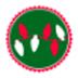 商祺网络加速器 V24.1.4.3 绿色版