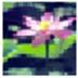 佛弟子视频播放器 20121014 绿色版