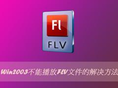 Win2003不能播放FLV文件的解决方法