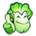 大白菜U盘启动制作工具 V5.2 二合一版