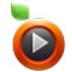 爱土豆(itudou) V3.7.6.6231 最新版