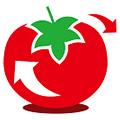 大番茄一键重装系统 V2.0.3.213