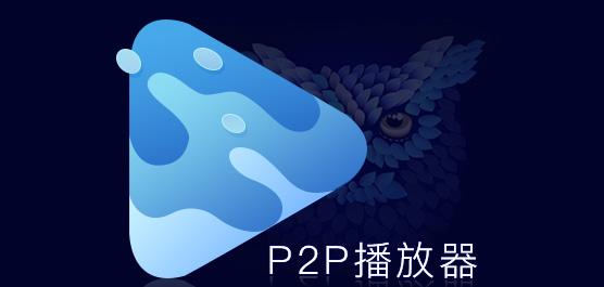 p2p播放器免费下载大全
