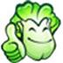 大白菜超级u盘启动制作工具 V8.0.3.5 装机维护中文版