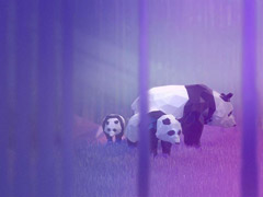 微软发布新Win10免费官方主题包《Remix 3D Animals》(附下载地址)