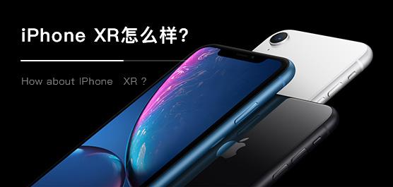 """最""""廉价""""新iPhone!iPhone XR最新消息及评测汇总"""