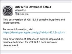 苹果发布iOS 12.1.3 beta 4开发者预览版/公测版更新
