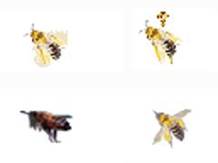 可爱蜜蜂鼠标指针