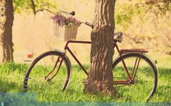 单车美景清新护眼Win7主题