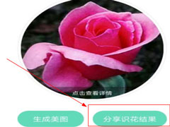 形色識花怎么分享到微信?形色識花怎么分享到微信的方法