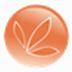 营养配餐系统 V2.0 官方安装版