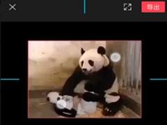 剪映怎么裁剪视频画面尺寸?剪映app裁剪视频画面尺寸的方法
