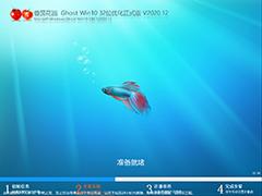 番茄花園 GHOST WIN10 32位 優化正式版 V2020.12