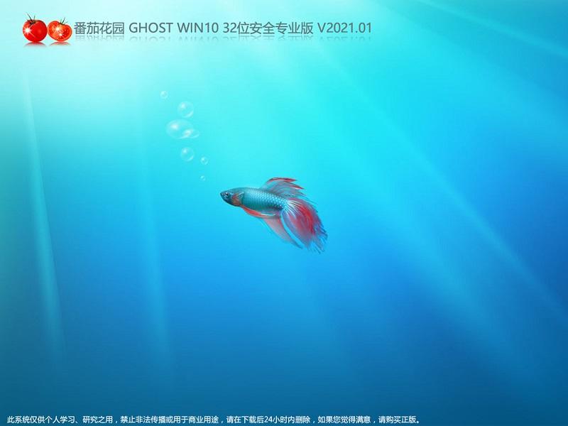 番茄花园 GHOST WIN10 32位安全专业版 V2021.01