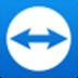 TeamViewer15 V15.17.6 綠色便攜版