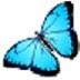 Magic Screenshot(屏幕截图软件) V3.1.6 官方版