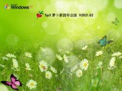 蘿卜家園 GHOST XP SP3 穩定專業版 V2021.02