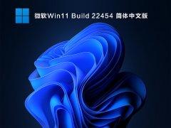 微软Win11 Build 22454 简体中文版 V2021.09