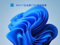 Win11企业版LTSC原版镜像 V2021